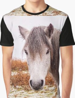 Dartmoor Pony Graphic T-Shirt