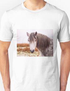 Dartmoor Pony Unisex T-Shirt