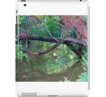 Oklahoma City Creekside Autumn Landscape iPad Case/Skin