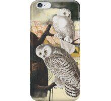 Owl Fushion - The Pair iPhone Case/Skin