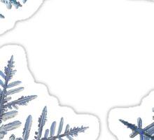 Four snowflakes on black background Sticker