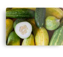 Cucumber Seeds Metal Print