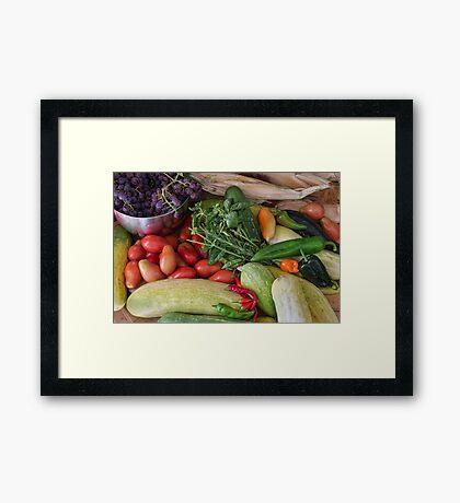 Garden Medley Framed Print