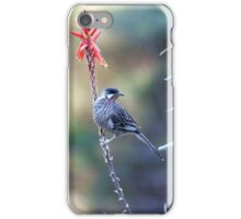 Red Wattle Bird 3 iPhone Case/Skin
