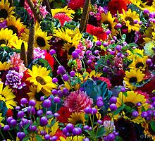 FARMERS MARKET FLOWERS by fsmitchellphoto