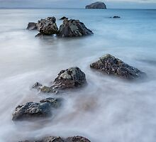 Bass Rock view by Christopher Cullen