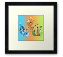 Mudkip, Torchic and Treecko Framed Print