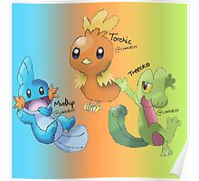 Mudkip, Torchic and Treecko Poster