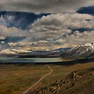 The Road to Mono Lake by Barbara  Brown