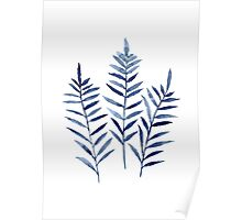 Fern Blue Botanical Watercolor Painting Image Picture Drawing Poster
