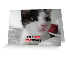 Sophia The Cat #1 [Tex's Owner] Greeting Card