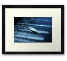 Feather Play Framed Print