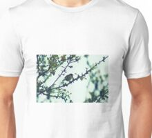 Robin at evening Unisex T-Shirt