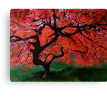 Japanese Maple Tree Red Pink Leaves Contemporary Acrylic Painting Canvas Print