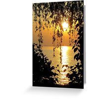 Lace Against the Sunset Greeting Card