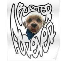 Buster Forever. Poster