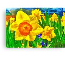 Extreme Daffodil Canvas Print