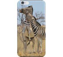 Zebra Fight - African Stallions iPhone Case/Skin