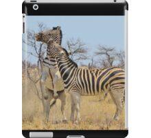 Zebra Fight - African Stallions iPad Case/Skin