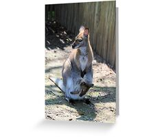 Roo two Greeting Card