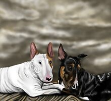 Lola and Freddie English Bull Terrier's  by Sookiesooker