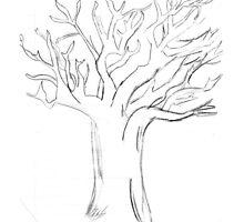 Lydia's Tree by stopitrebecca
