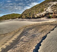 Patterns in the Sand by Elaine Teague