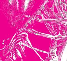Untitled Pink Sticker
