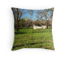 abandoned hovel Throw Pillow