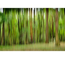blurry trees Photographic Print