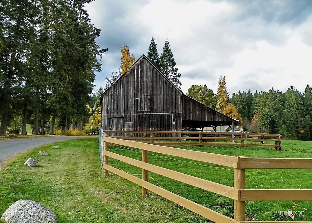 Cattle Barn by AnnDixon
