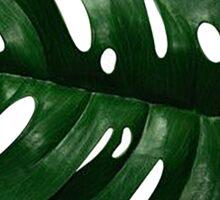 Palm Leaf Sticker