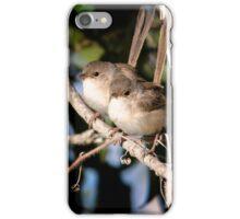 Fairy Wrens iPhone Case/Skin