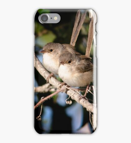 Fairy Wrens iPhone Case/Skin