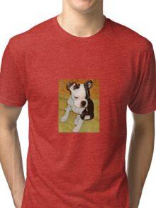 Boston Terrier Tri-blend T-Shirt