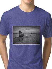 Ponies of Dartmoor Tri-blend T-Shirt