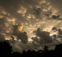Bizarre Mammatus Clouds In Toronto At Sunset by Georgia Mizuleva