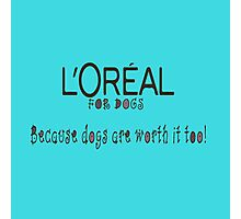 L'oriel for dogs Photographic Print