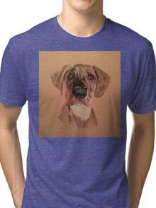 PD Tri-blend T-Shirt
