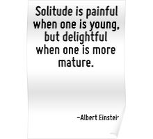 Solitude is painful when one is young, but delightful when one is more mature. Poster
