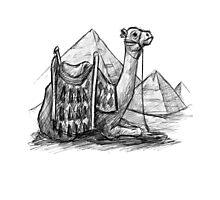 Camel Shirt, Pyramids Shirt Photographic Print