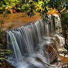 Somersby Falls with the new Canon 5D by Michael Matthews