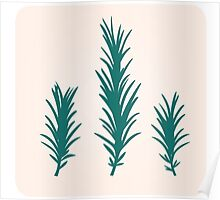 Rosemary herb silhouette : green and  Poster