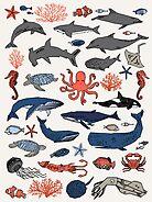 Ocean Animals by Andrea Lauren by Andrea Lauren