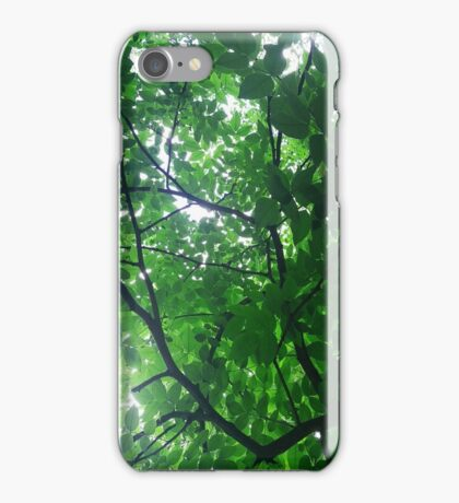 Sun Through the Leaves iPhone Case/Skin