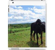 Black Calf in Field iPad Case/Skin