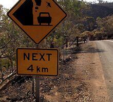 Beware of falling kangaroos by Robdownunder