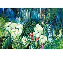 Rain forest Walk Photographic Print