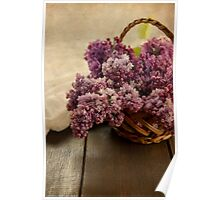Lilac in the basket Poster