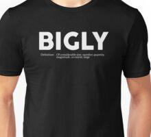 Bigly Definition Unisex T-Shirt